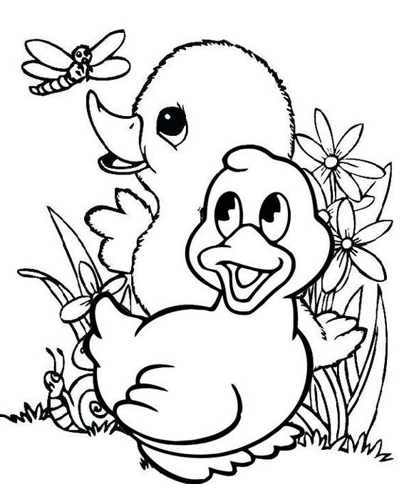 Cute And Fun Baby Duck Coloring Pages
