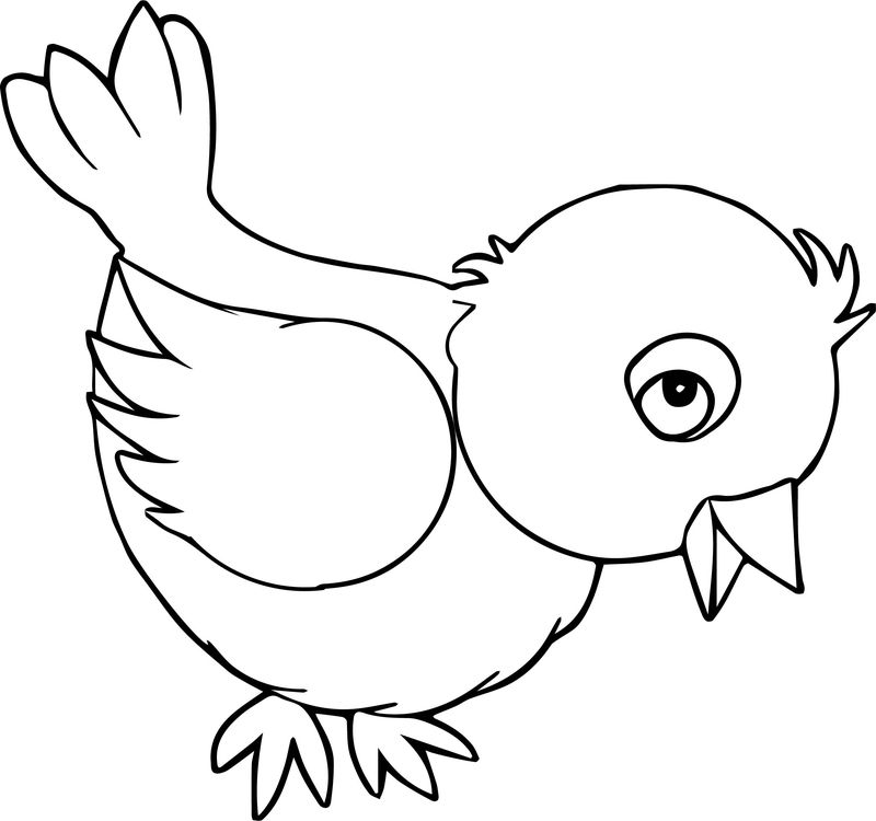 Cute Bird Look Coloring Page