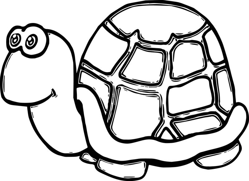 Cute Tortoise Funny Turtle Coloring Page