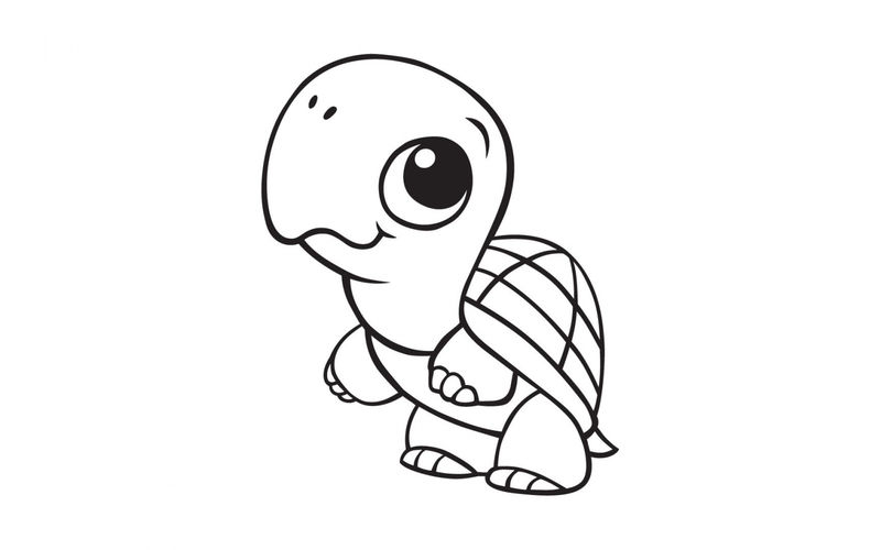 Cutte Baby Turtle Coloring Page