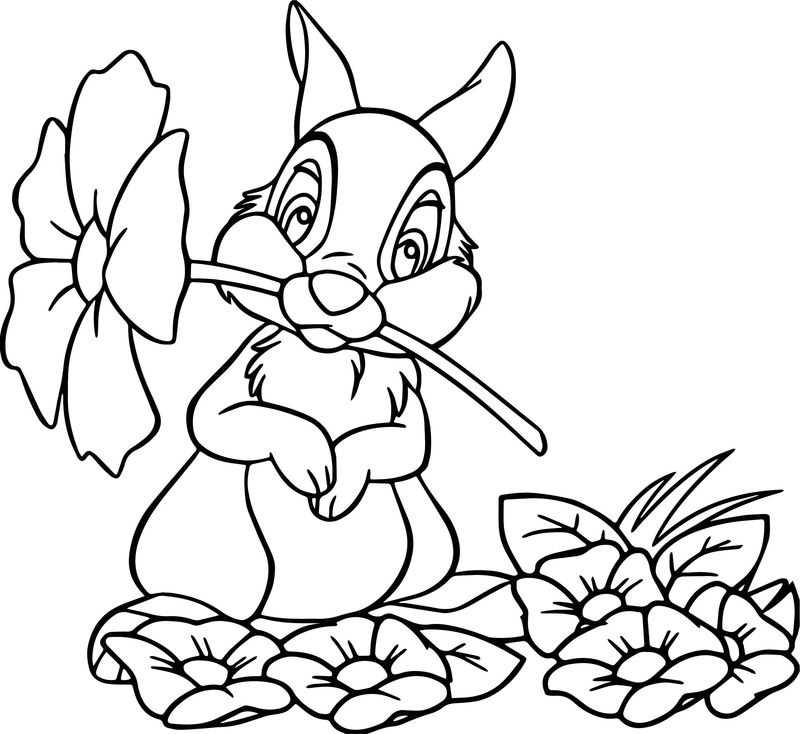 Disney Bambi Thumber Bunny Cartoon Flower Coloring Page
