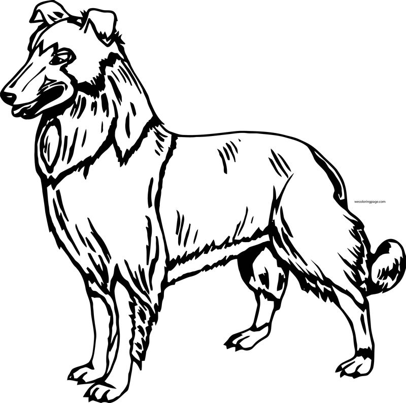 Dog Coloring Pages 013