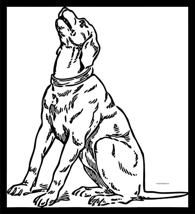 Dog Coloring Pages 034