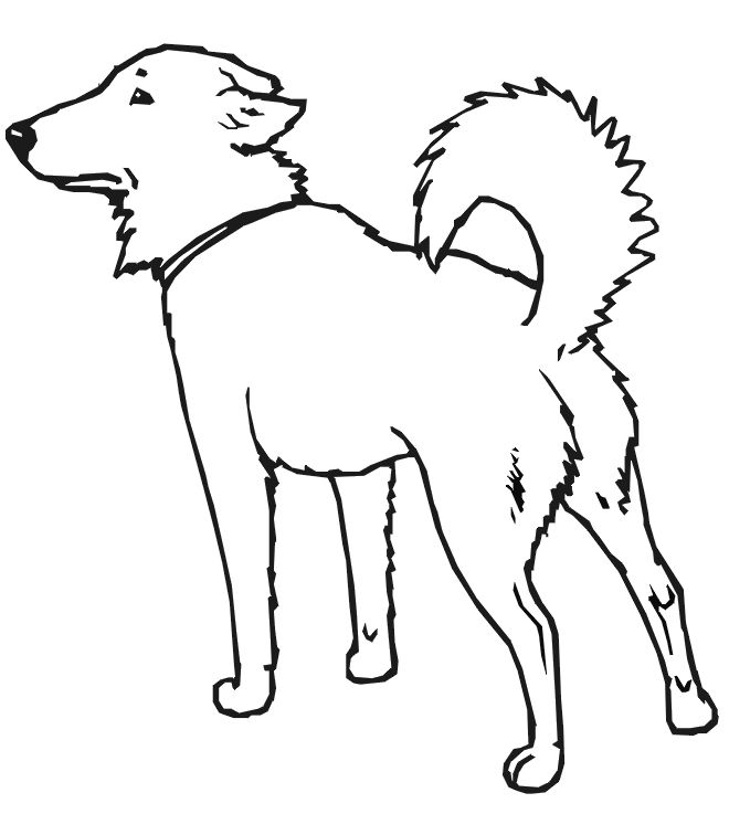 Dog Coloring Pages Printable