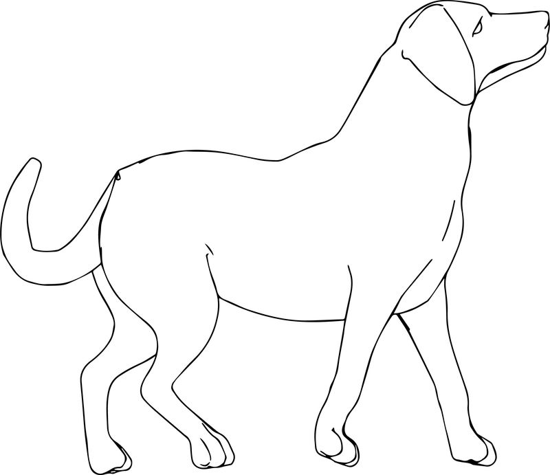 Dog Side Coloring Page