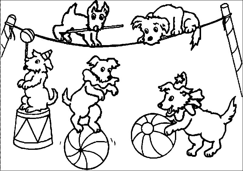 Dogs Circus Coloring Page