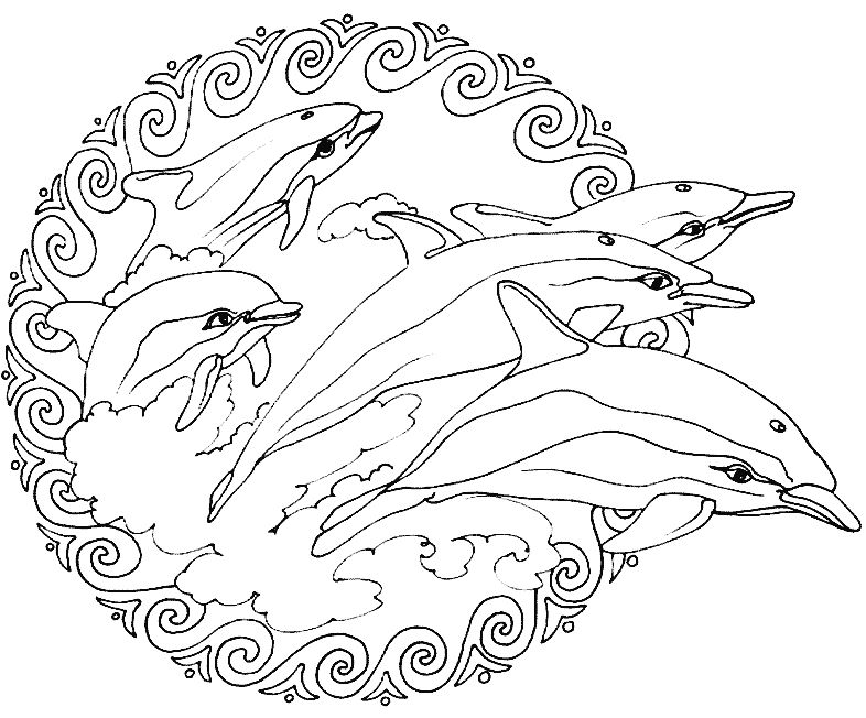 Dolphin Animal Mandala Coloring Pages 1
