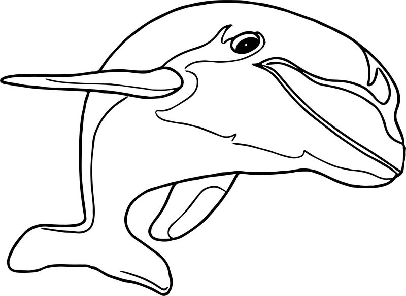 Dolphin Coloring Page 008