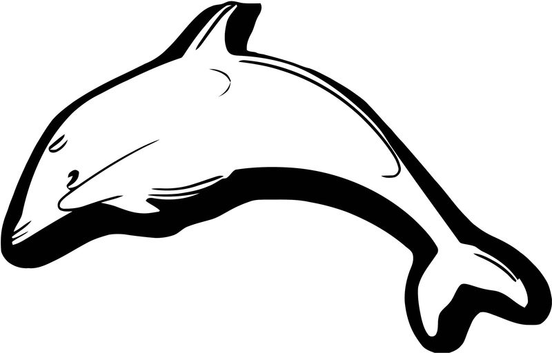 Dolphin Coloring Page 052