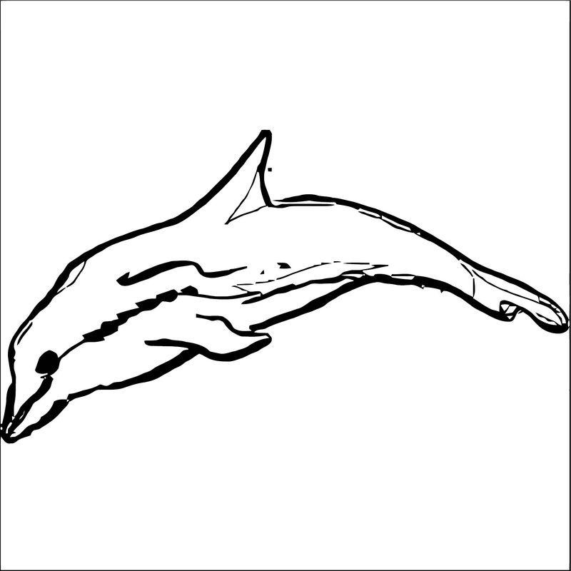 Dolphin Coloring Page 059