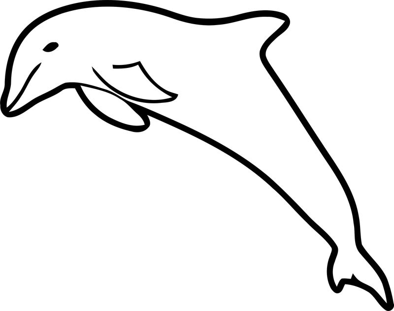Dolphin Coloring Page 125