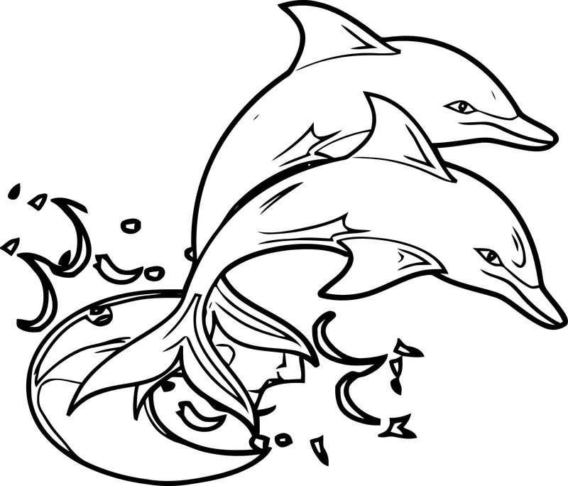Dolphin Coloring Page 143