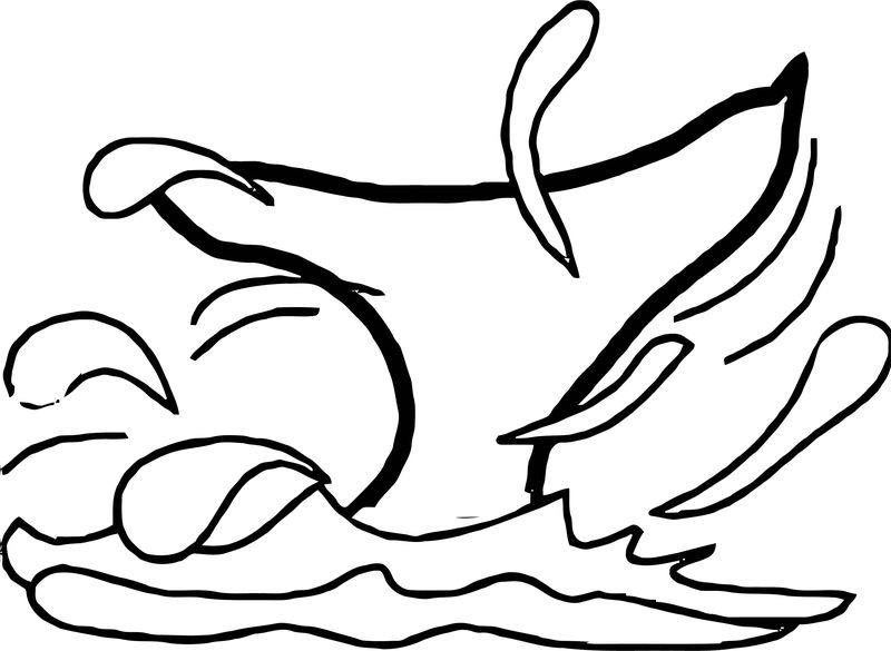 Dolphin Coloring Page 144