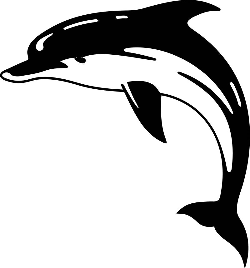 Dolphin Coloring Page 178