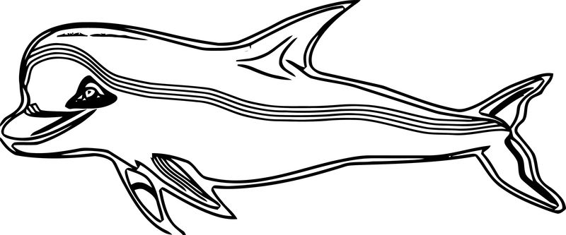 Dolphin Coloring Page 179