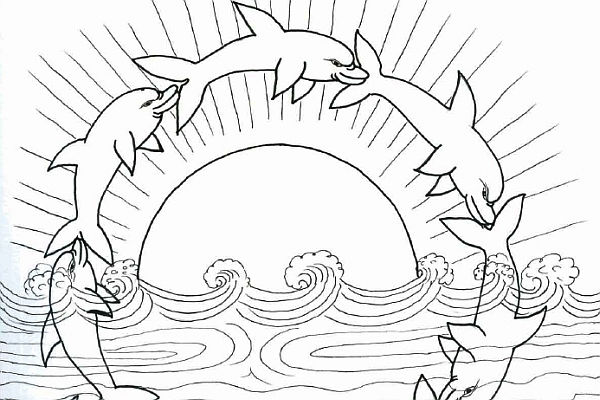 Dolphins Coloring Pages Playful