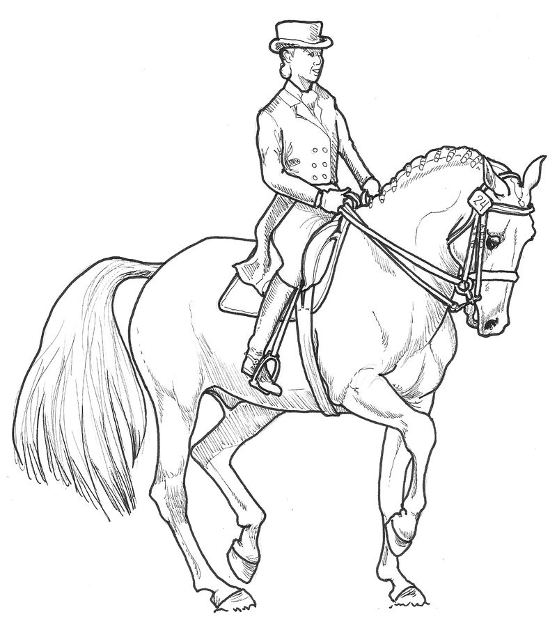 Dressage Horse Coloring Page