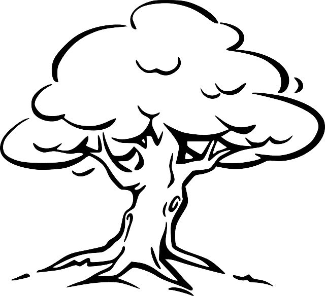 Easy Coloring Pages Tree