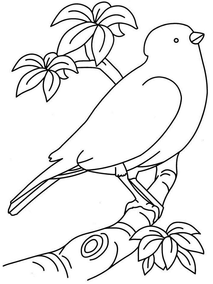 Easy Printable Coloring Pages Bird