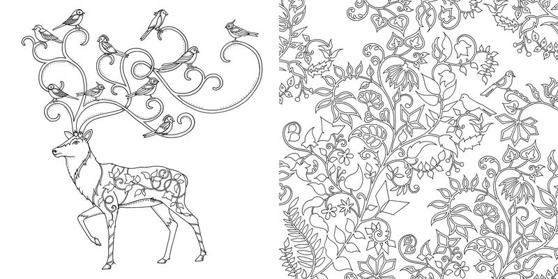 Enchanted Forest Coloring Sheet