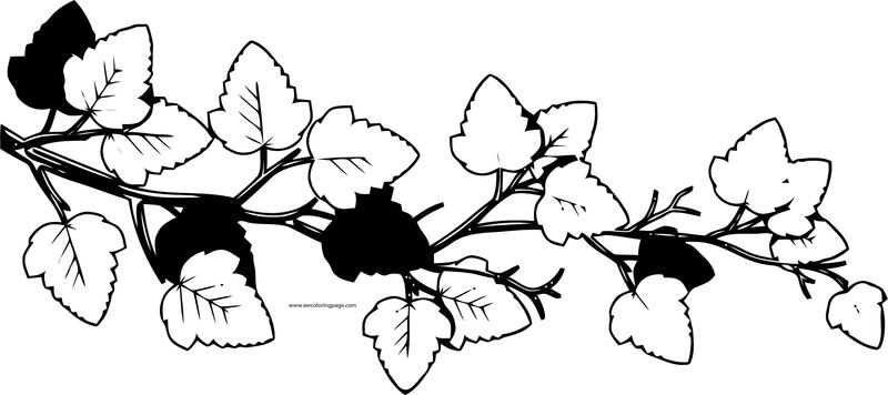 Fall Black And White Leaf Coloring Page