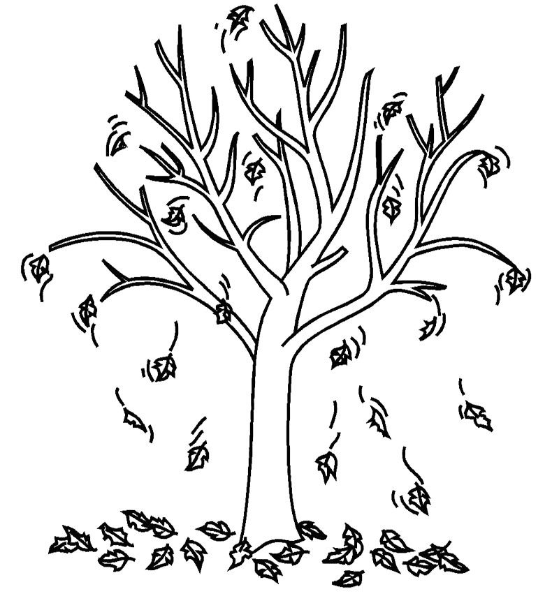 Fall Coloring Pages Tree