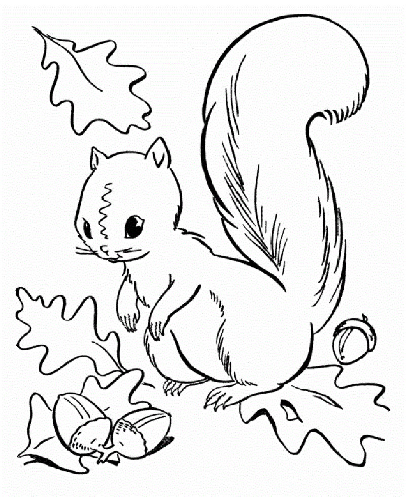 Fall Coloring Sheet For School 001