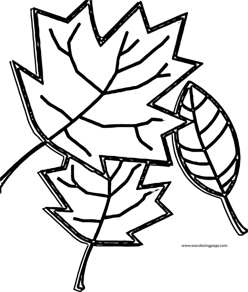 Fall Leaf Coloring Page 001