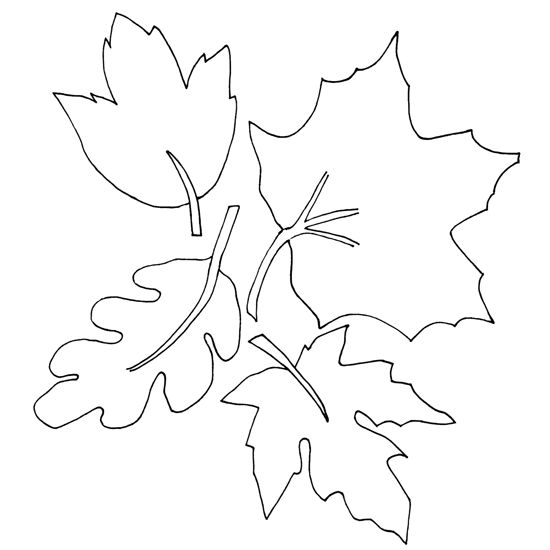 Fall Leaves Coloring Pages 001