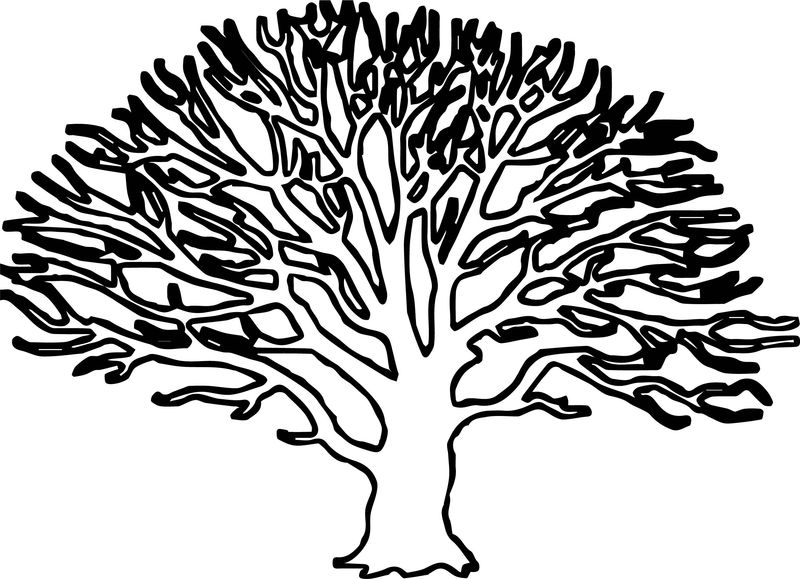 Fall Tree Coloring Page 001