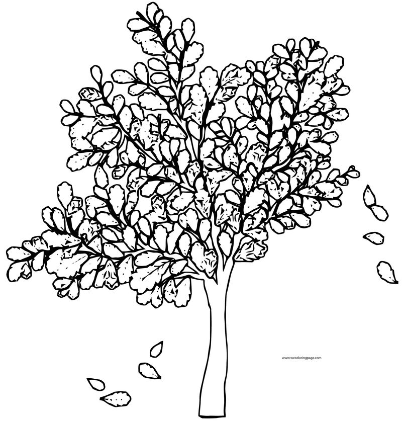 Fall Tree Coloring Page 1