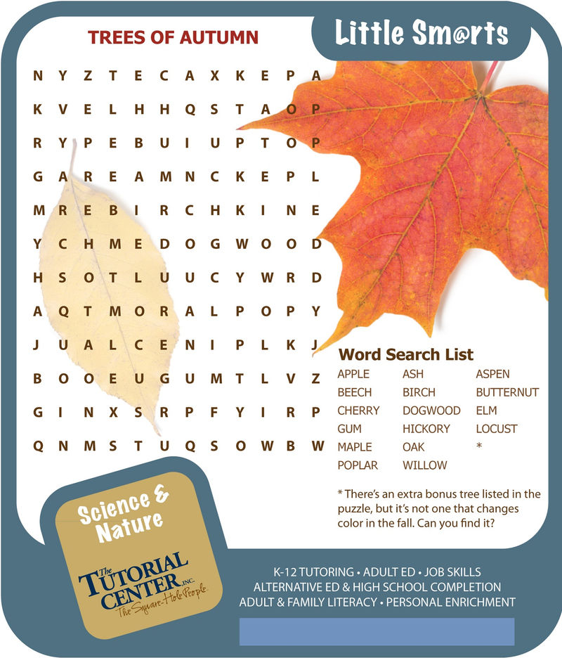 Fall Word Search Best