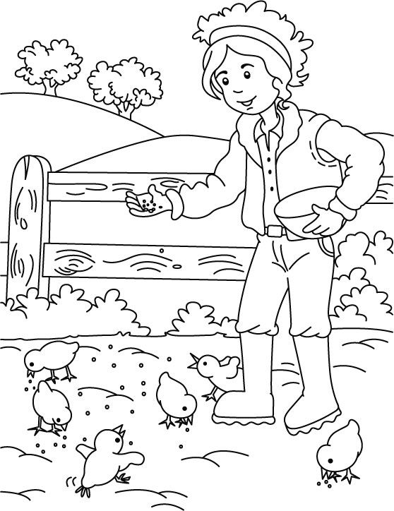 Farmer Feeding Chickens Coloring Page