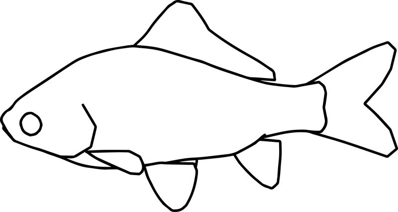 Fish11 Coloring Page
