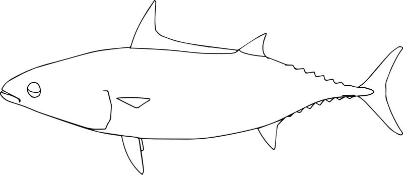 Fish15 Coloring Page