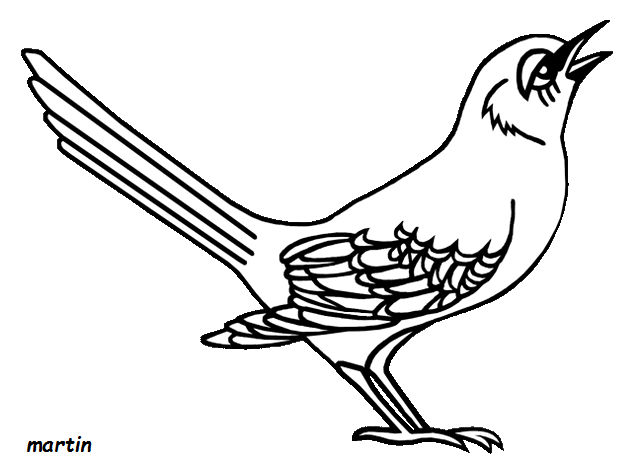Florida Mockingbird Coloring Books