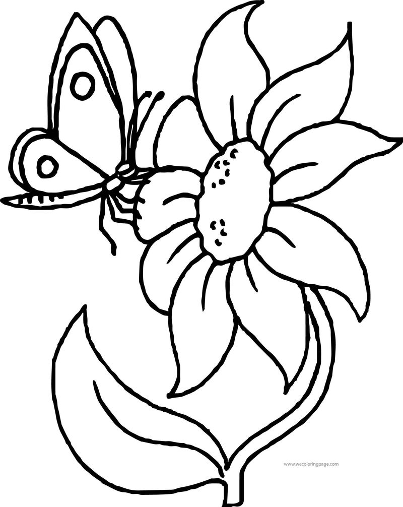 Flower Butterfly Touch Coloring Page