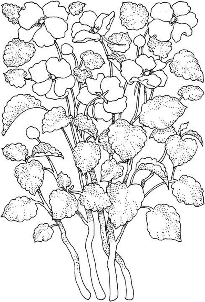 Flower Coloring 001