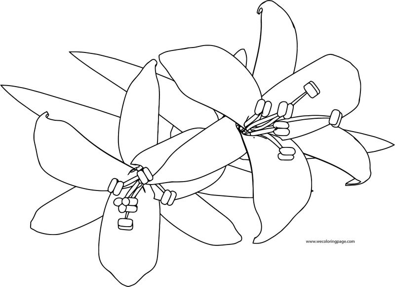 Flower Coloring Page 04