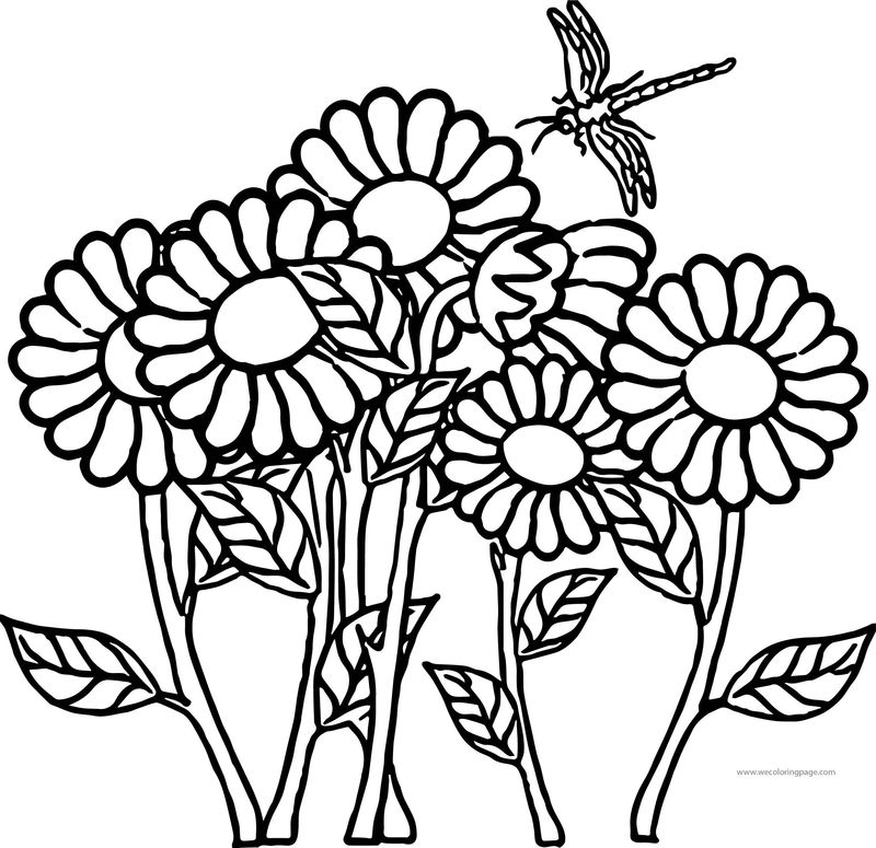 Flower Dragonfly Coloring Page