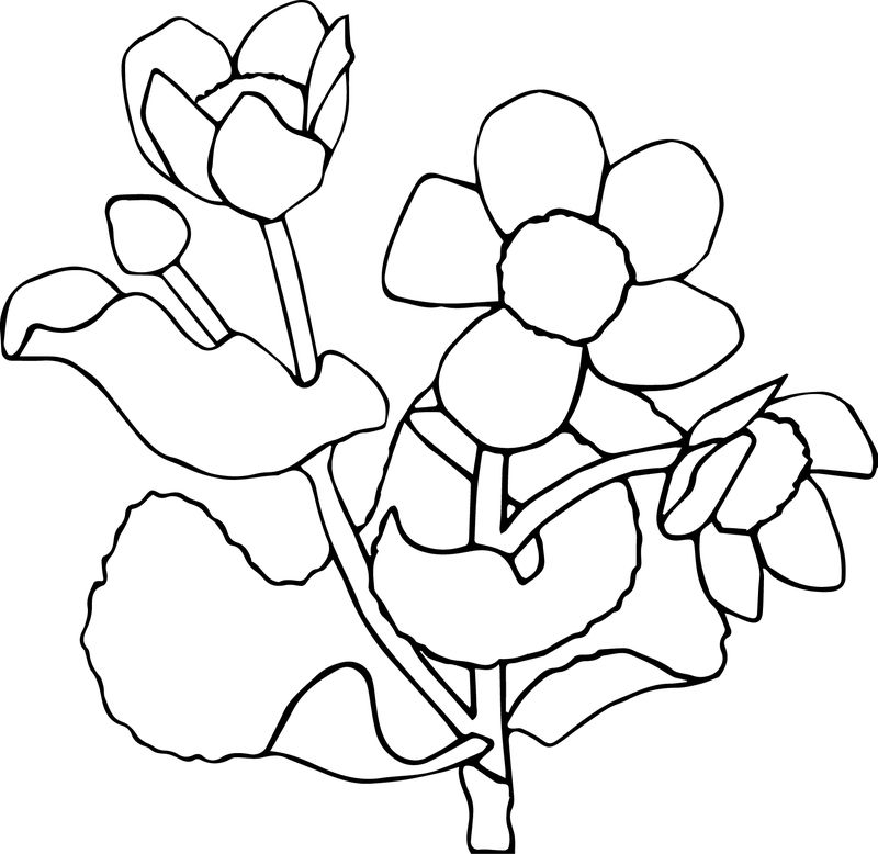 Flower For Children Coloring Page