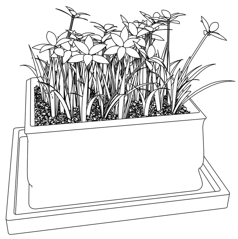 Flowers Bucket Coloring Page Download Hd Picture