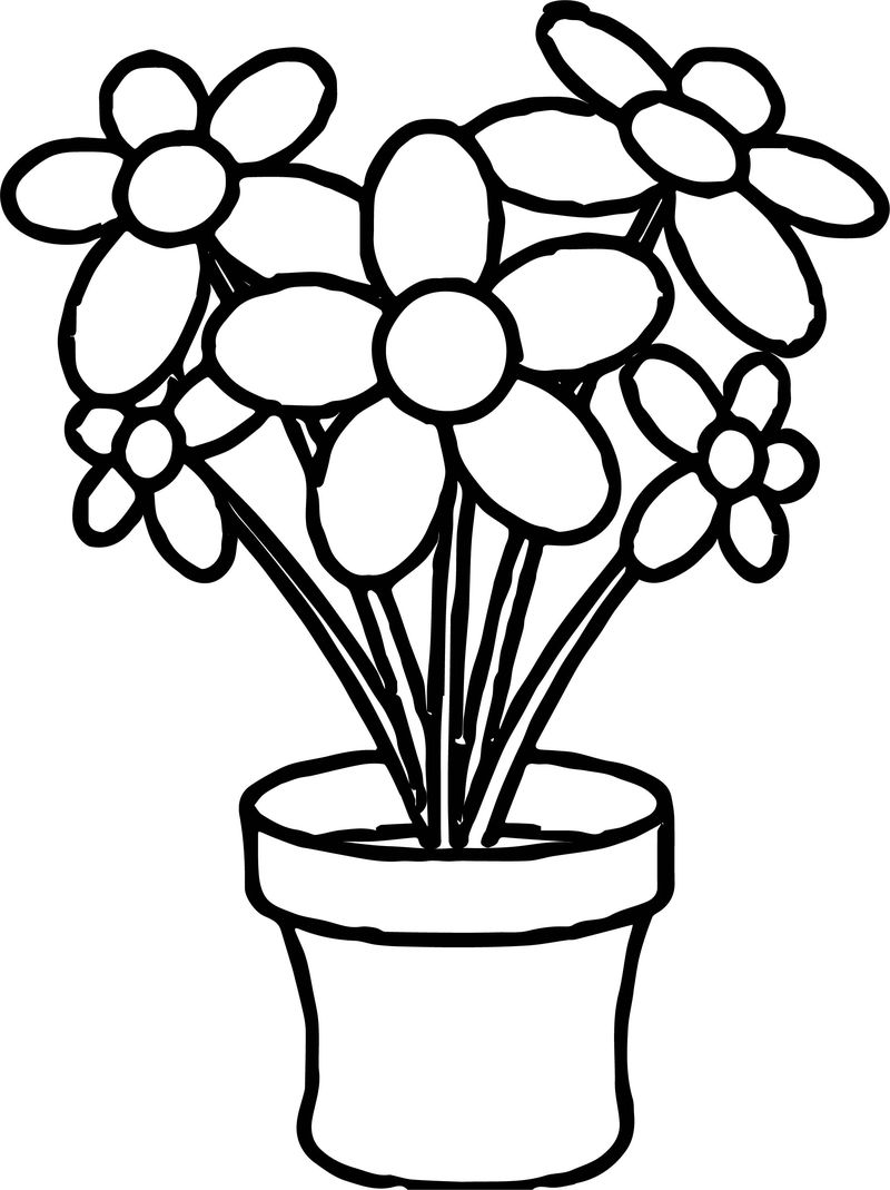 Flowers In Planter Coloring Page