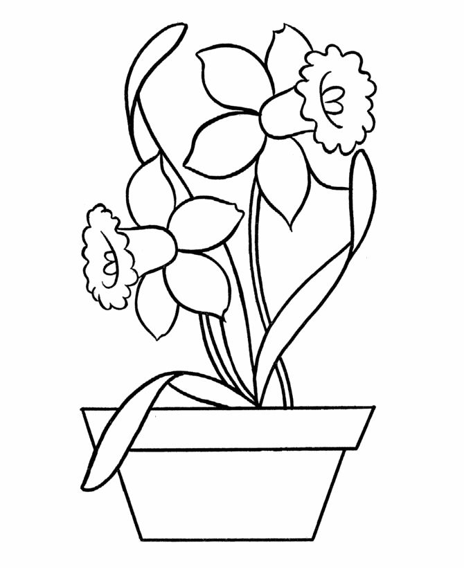 Free Easy Coloring Pages Flowers 001