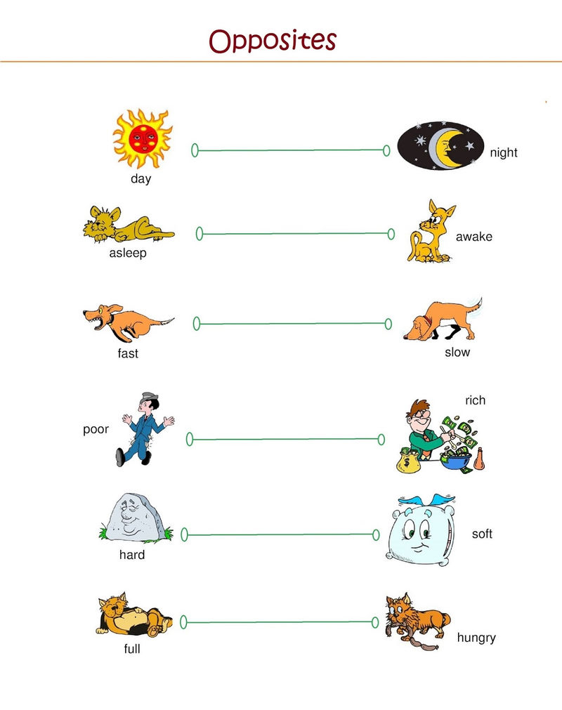 Free Elementary Worksheets About Opposites