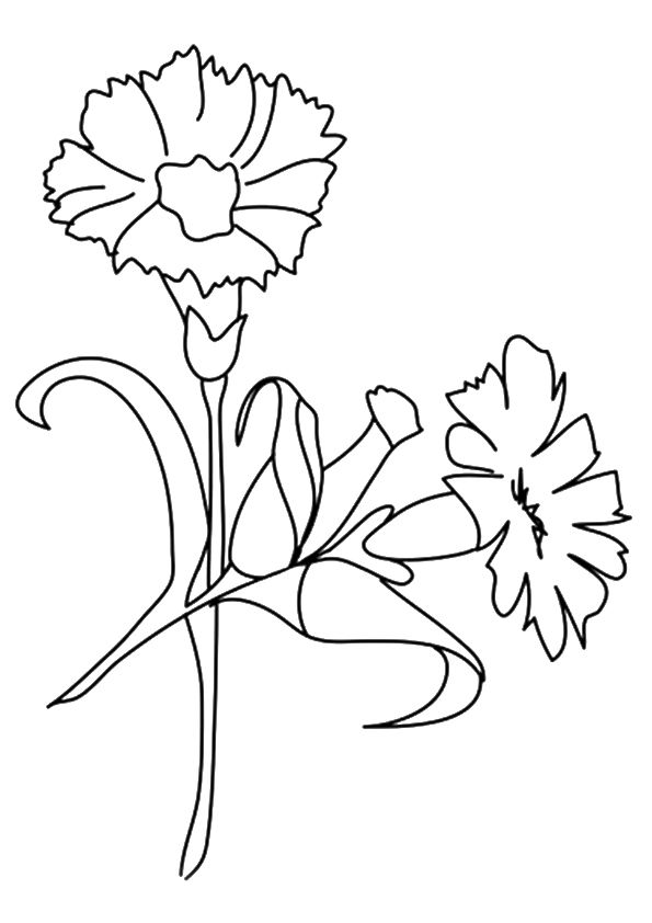 Free Flower Colroing Page 001