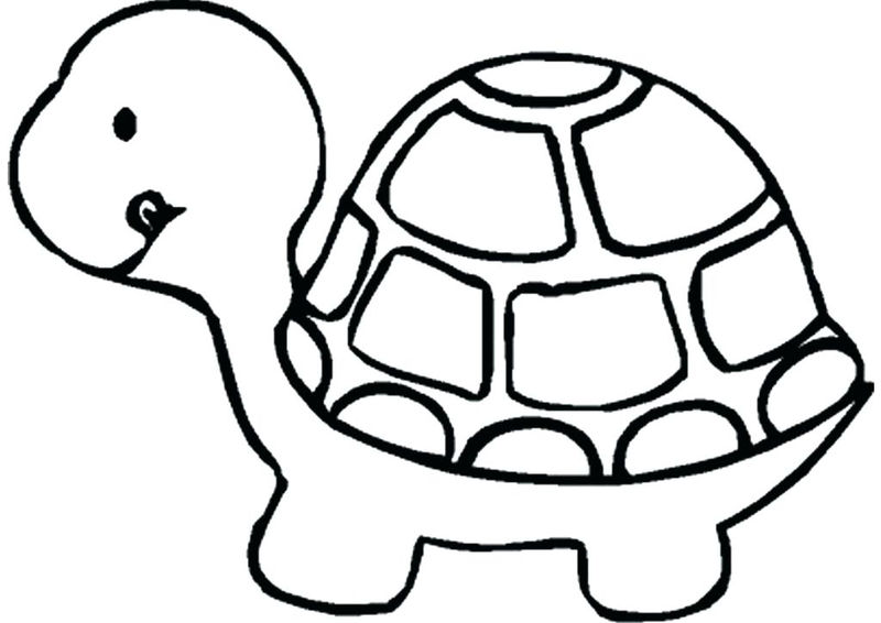 Free Pet Turtle Coloring Page