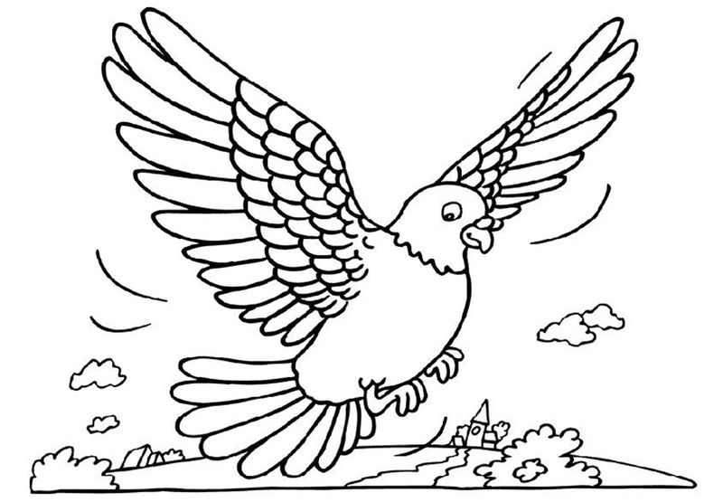 Free Pigeon Coloring Pages 001
