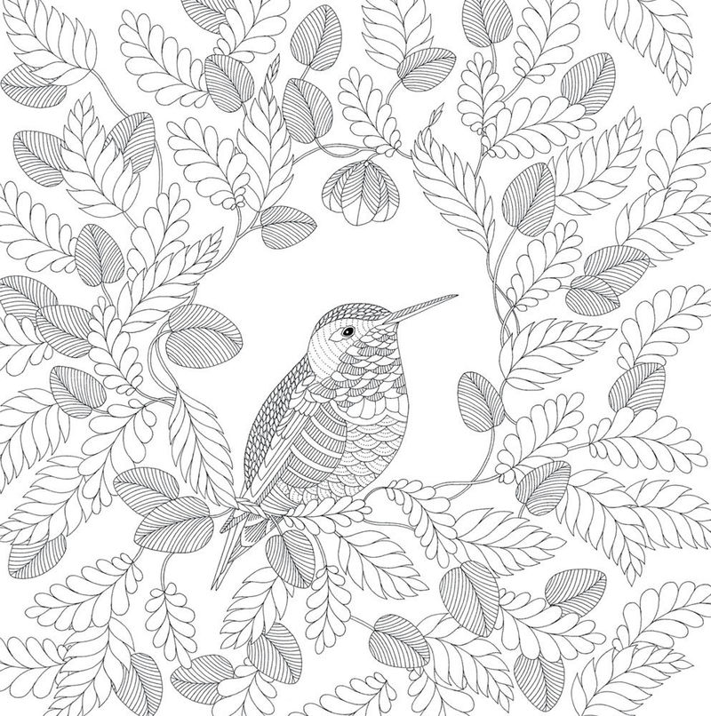 Free Printable Animal Coloring Pages For Adults 001