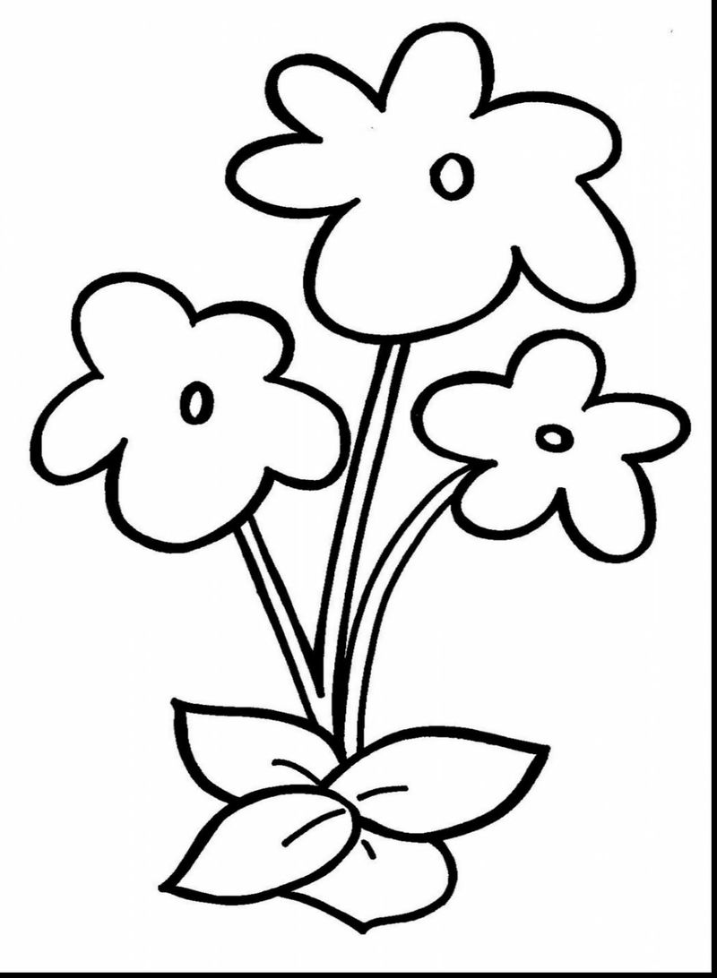 Free Simple Flower Coloring Pages